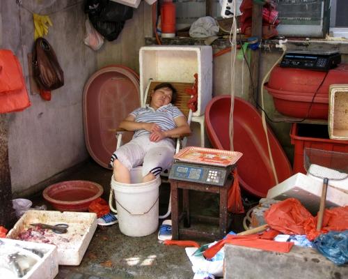 19 2009.07.26. Xingfu Lu 6